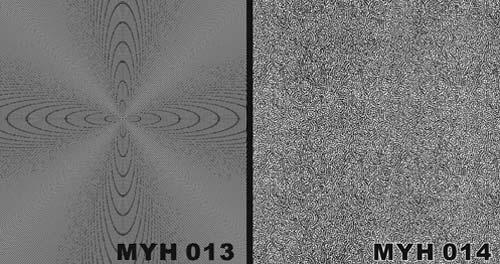 MYH 013 / MYH 014