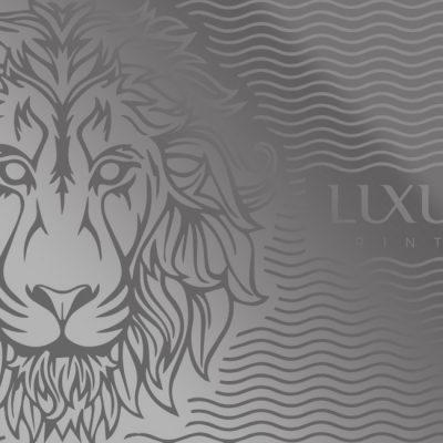 Stainless Steel Luxury Card   Luxury Printing